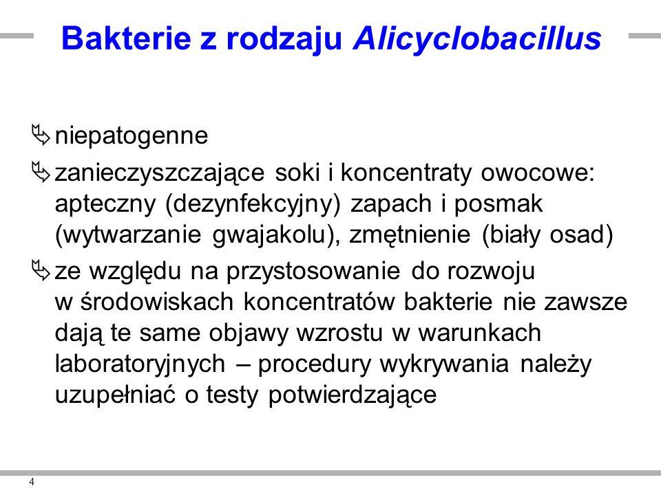 4 Bakterie z rodzaju Alicyclobacillus  niepatogenne  zanieczyszczające soki i koncentraty owocowe: apteczny (dezynfekcyjny) zapach i posmak (wytwarzanie gwajakolu), zmętnienie (biały osad)  ze względu na przystosowanie do rozwoju w środowiskach koncentratów bakterie nie zawsze dają te same objawy wzrostu w warunkach laboratoryjnych – procedury wykrywania należy uzupełniać o testy potwierdzające