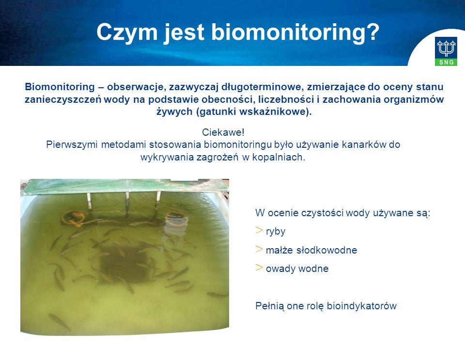 Biomonitoring – obserwacje, zazwyczaj długoterminowe, zmierzające do oceny stanu zanieczyszczeń wody na podstawie obecności, liczebności i zachowania organizmów żywych (gatunki wskaźnikowe).