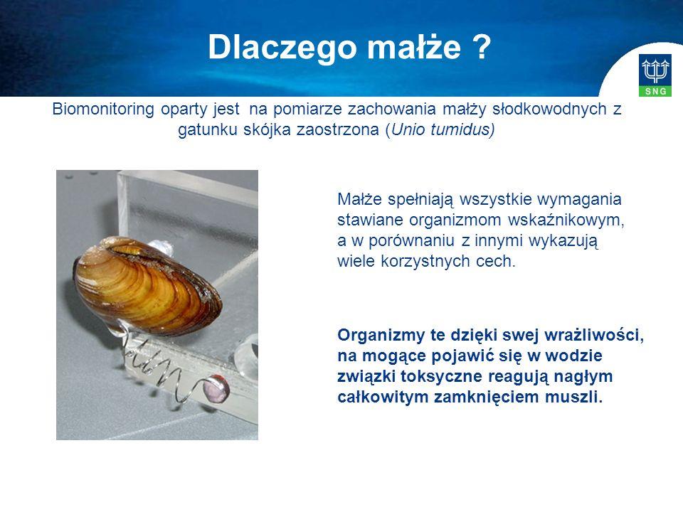 Biomonitoring oparty jest na pomiarze zachowania małży słodkowodnych z gatunku skójka zaostrzona (Unio tumidus) Organizmy te dzięki swej wrażliwości,
