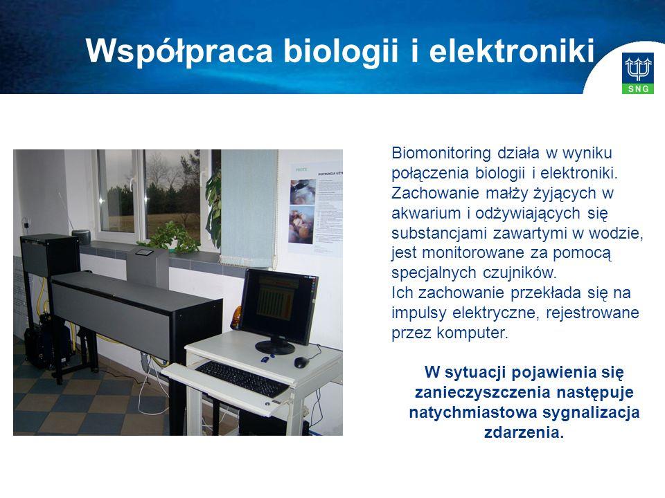 Biomonitoring działa w wyniku połączenia biologii i elektroniki. Zachowanie małży żyjących w akwarium i odżywiających się substancjami zawartymi w wod