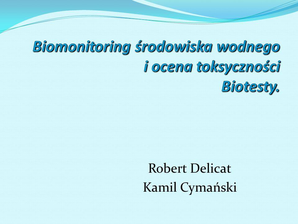 Robert Delicat Kamil Cymański