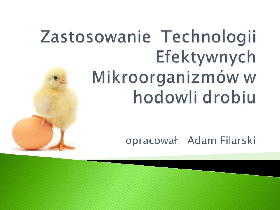  Jest ona jedynym w Polsce licencjonowany producentem Efektywnych Mikroorganizmów (EM TM ).