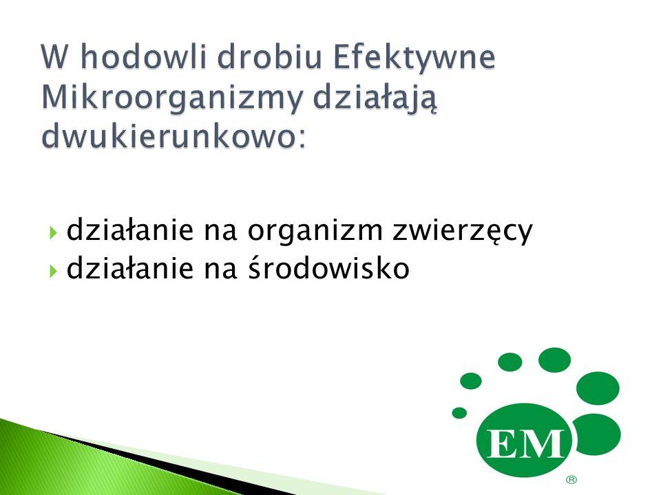  Lepsza przyswajalność i wykorzystanie paszy - zmniejszenie zużycia paszy na 1kg przyrostu o 0,05 do 0,10 kg  Eliminacja drobnoustrojów patogennych z organizmu (np.