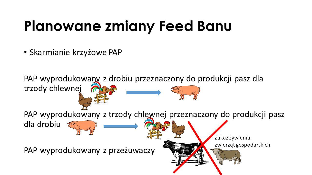 Planowane zmiany Feed Banu Skarmianie krzyżowe PAP PAP wyprodukowany z drobiu przeznaczony do produkcji pasz dla trzody chlewnej PAP wyprodukowany z trzody chlewnej przeznaczony do produkcji pasz dla drobiu PAP wyprodukowany z przeżuwaczy Zakaz żywienia zwierząt gospodarskich