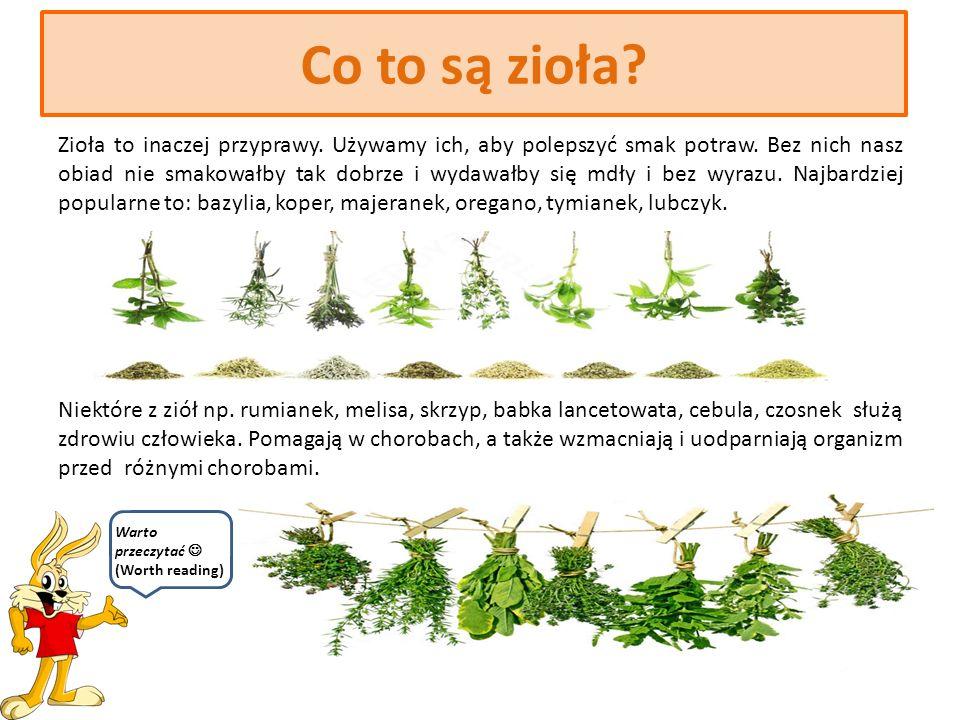 Zioła w kuchni Anna Pokojska kl. 6a Sp 28 Wrocław Cześć, to ja – królik.