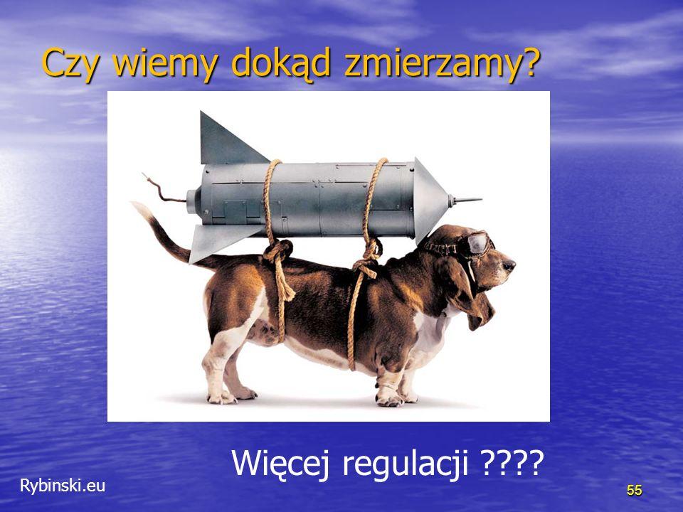 Rybinski.eu 56 Początek ery turbulencji 3-5% 1-3% Great moderation Age of turbulence ???.