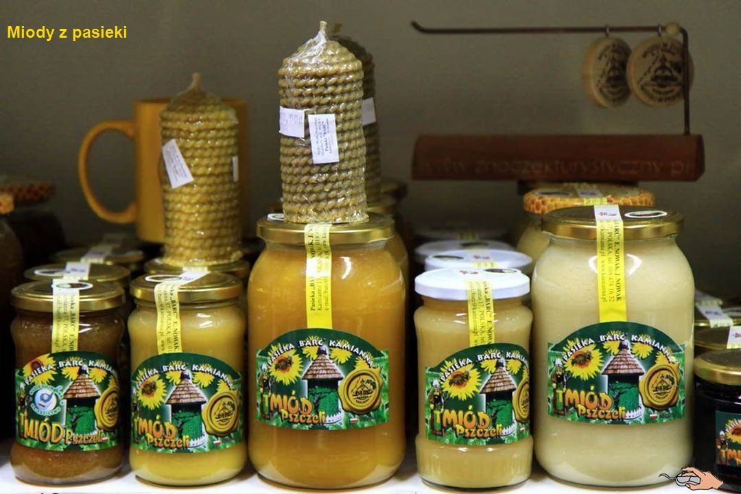 Apiterapia to nowa gałąź medycyny naturalnej, zajmująca się leczeniem za pomocą pszczół.