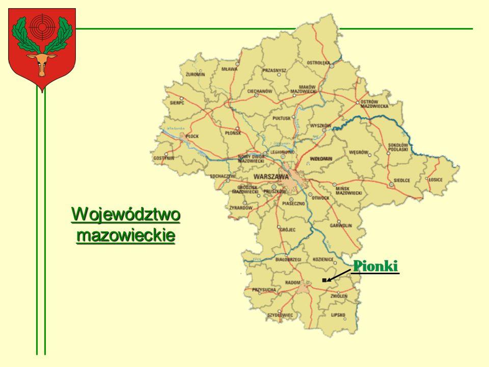 Pionki, drugie pod względem wielkości miasto subregionu radomskiego, są miastem przemysłowym, w którym dominującą rolę pełnił przemysł chemiczny.