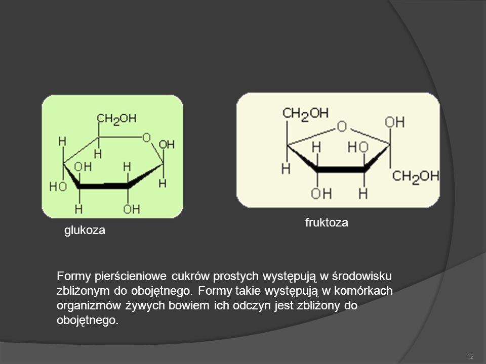 12 glukoza fruktoza Formy pierścieniowe cukrów prostych występują w środowisku zbliżonym do obojętnego. Formy takie występują w komórkach organizmów ż