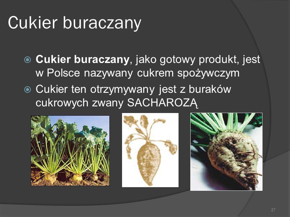Cukier buraczany  Cukier buraczany, jako gotowy produkt, jest w Polsce nazywany cukrem spożywczym  Cukier ten otrzymywany jest z buraków cukrowych z