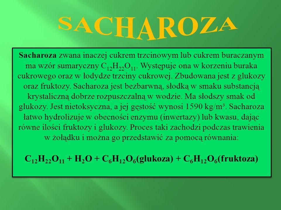 Sacharoza zwana inaczej cukrem trzcinowym lub cukrem buraczanym ma wzór sumaryczny C 12 H 22 O 11.