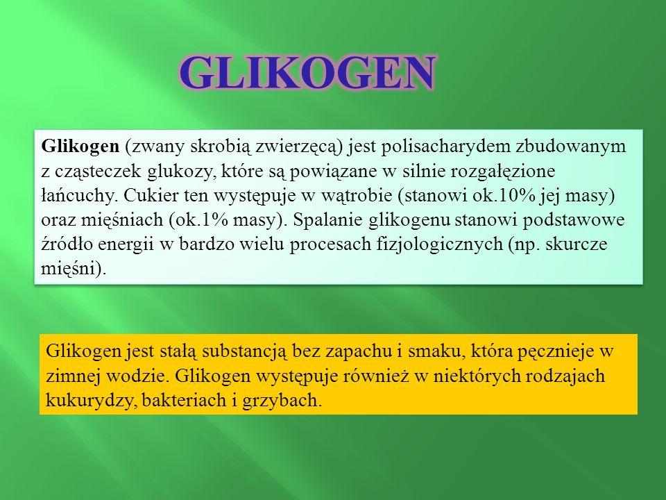 Glikogen (zwany skrobią zwierzęcą) jest polisacharydem zbudowanym z cząsteczek glukozy, które są powiązane w silnie rozgałęzione łańcuchy.