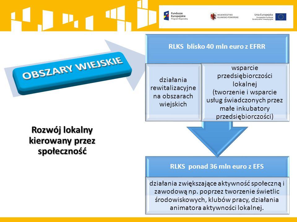 RLKS ponad 36 mln euro z EFS działania zwiększające aktywność społeczną i zawodową np.