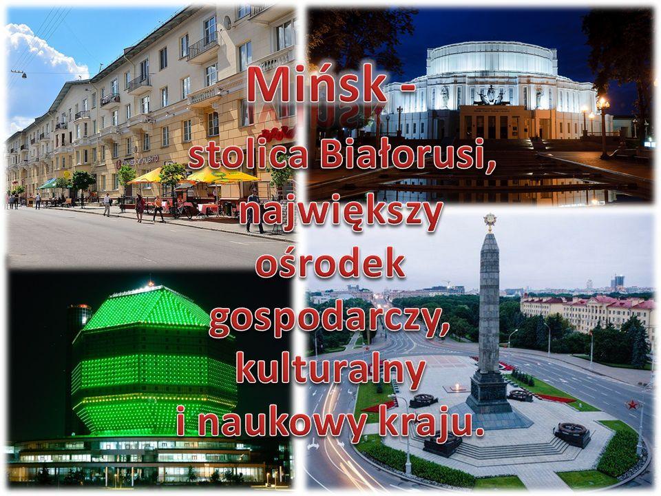 Wielki żubr – jeden z symboli Białorusi – na granicy obwodów brzeskiego i mińskiego