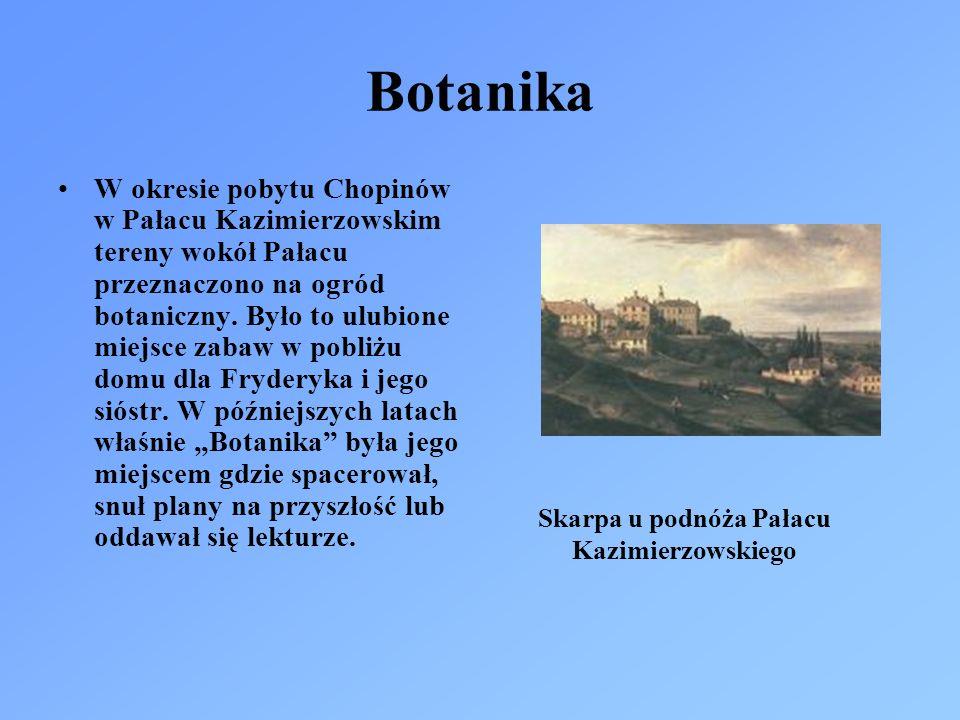 Botanika W okresie pobytu Chopinów w Pałacu Kazimierzowskim tereny wokół Pałacu przeznaczono na ogród botaniczny. Było to ulubione miejsce zabaw w pob