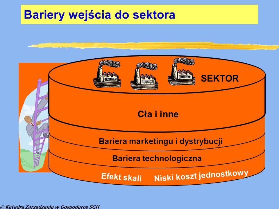 © Katedra Zarządzania w Gospodarce SGH MarkaWłaścicielUdział Żywiec ZdrójDanone30,90% NałęczowiankaNestle Waters9,80% Kropla BeskiduCoca Cola9,40% CisowiankaNałęczów Zdrój SA6,90% NAJWAŻNIEJSZE MARKI WÓD NA RYNKU POLSKIM (udział w sprzedaży pod względem wartości) w 2008 r.