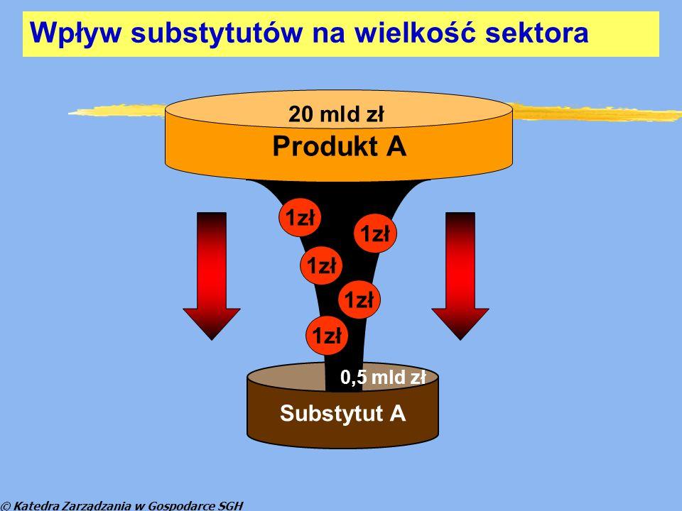 © Katedra Zarządzania w Gospodarce SGH Bariery wejścia do polskiej gospodarki z p.w.