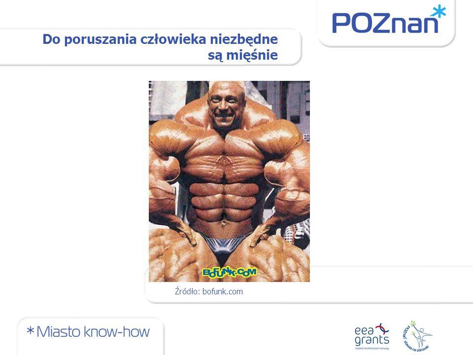 Do poruszania człowieka niezbędne są mięśnie Źródło: bofunk.com