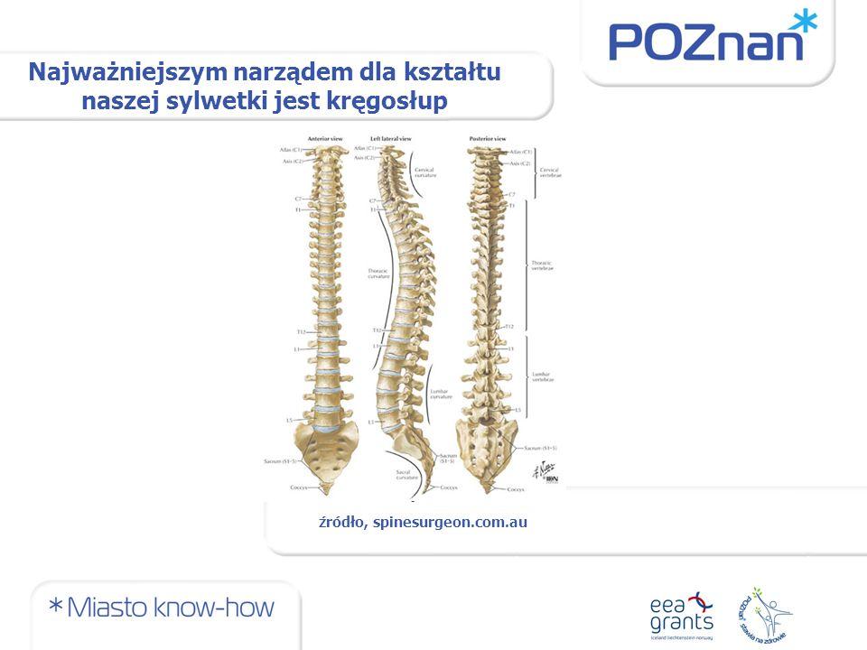 Najważniejszym narządem dla kształtu naszej sylwetki jest kręgosłup źródło, spinesurgeon.com.au