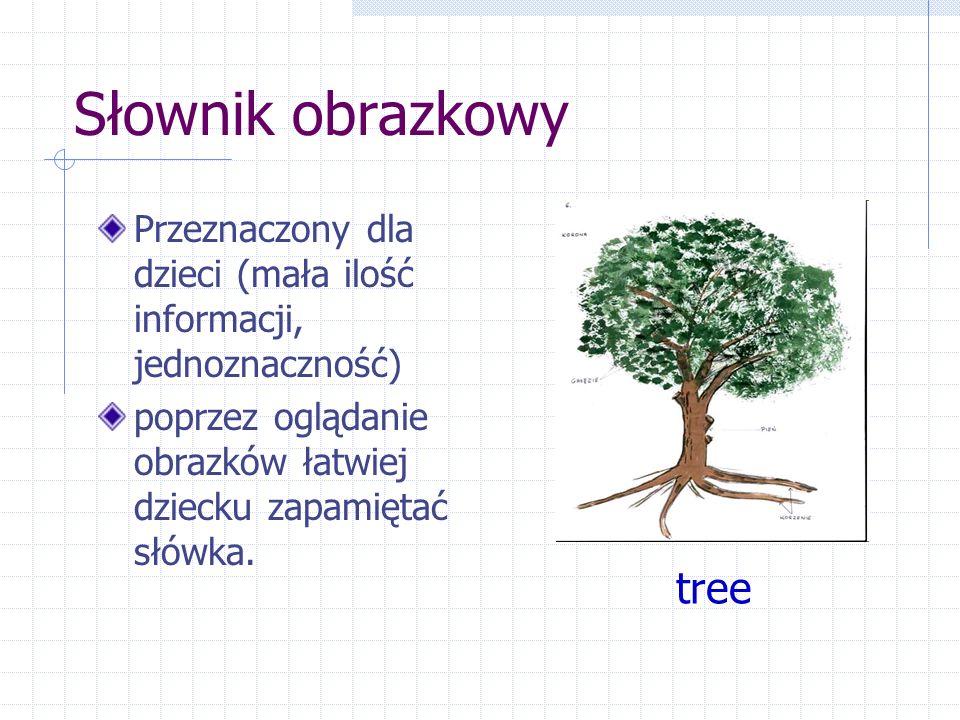 Słownik obrazkowy Przeznaczony dla dzieci (mała ilość informacji, jednoznaczność) poprzez oglądanie obrazków łatwiej dziecku zapamiętać słówka.