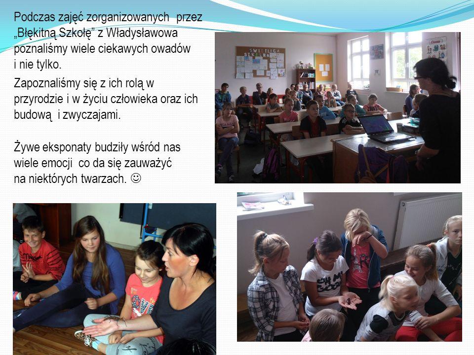 """Podczas zajęć zorganizowanych przez """"Błękitną Szkołę"""" z Władysławowa poznaliśmy wiele ciekawych owadów i nie tylko. Zapoznaliśmy się z ich rolą w przy"""