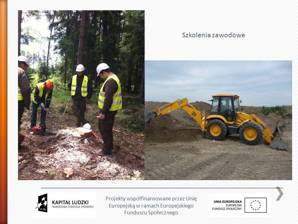 Projekty współfinansowane przez Unię Europejską w ramach Europejskiego Funduszu Społecznego Szkolenia zawodowe