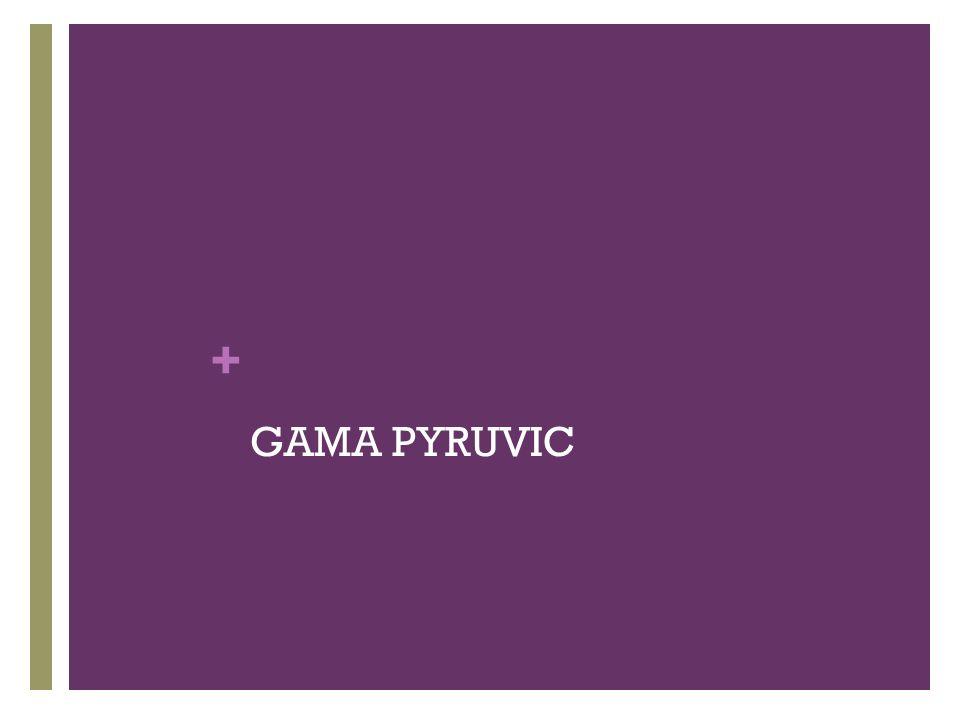 + GAMA PYRUVIC