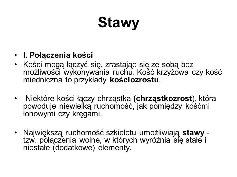 Stawy I.