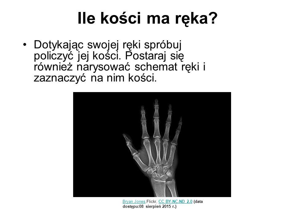 Ile kości ma ręka? Dotykając swojej ręki spróbuj policzyć jej kości. Postaraj się również narysować schemat ręki i zaznaczyć na nim kości. Bryan Jones