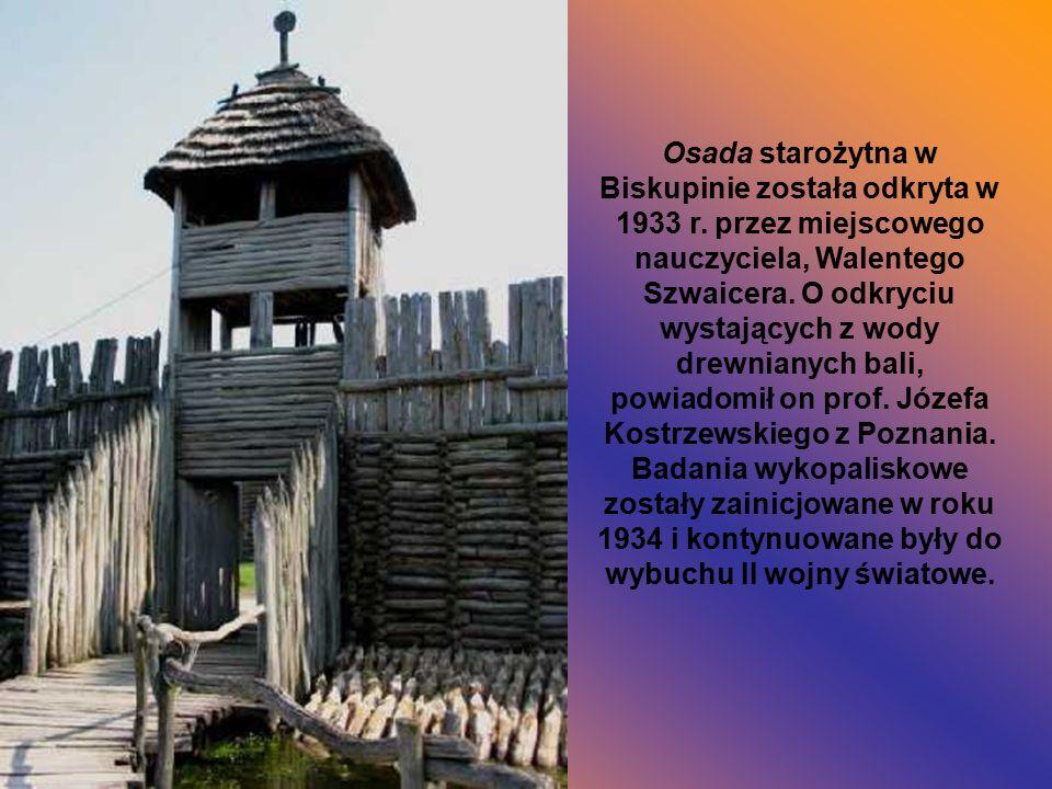 Osada starożytna w Biskupinie została odkryta w 1933 r. przez miejscowego nauczyciela, Walentego Szwaicera. O odkryciu wystających z wody drewnianych