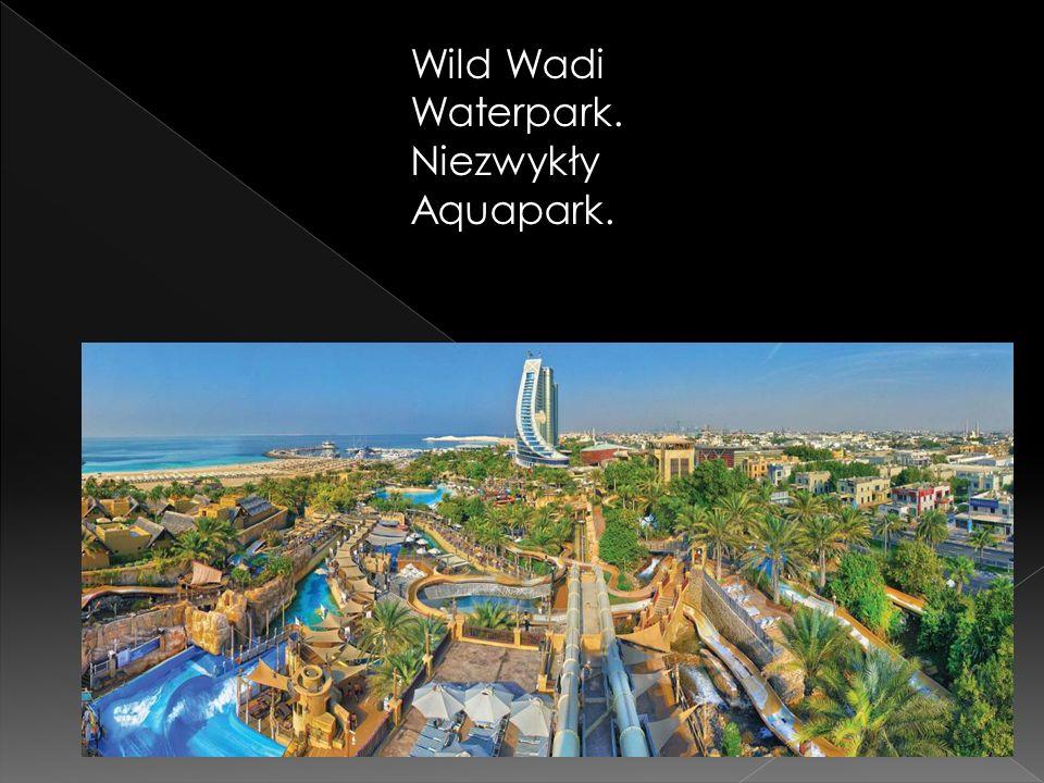 Wild Wadi Waterpark. Niezwykły Aquapark.