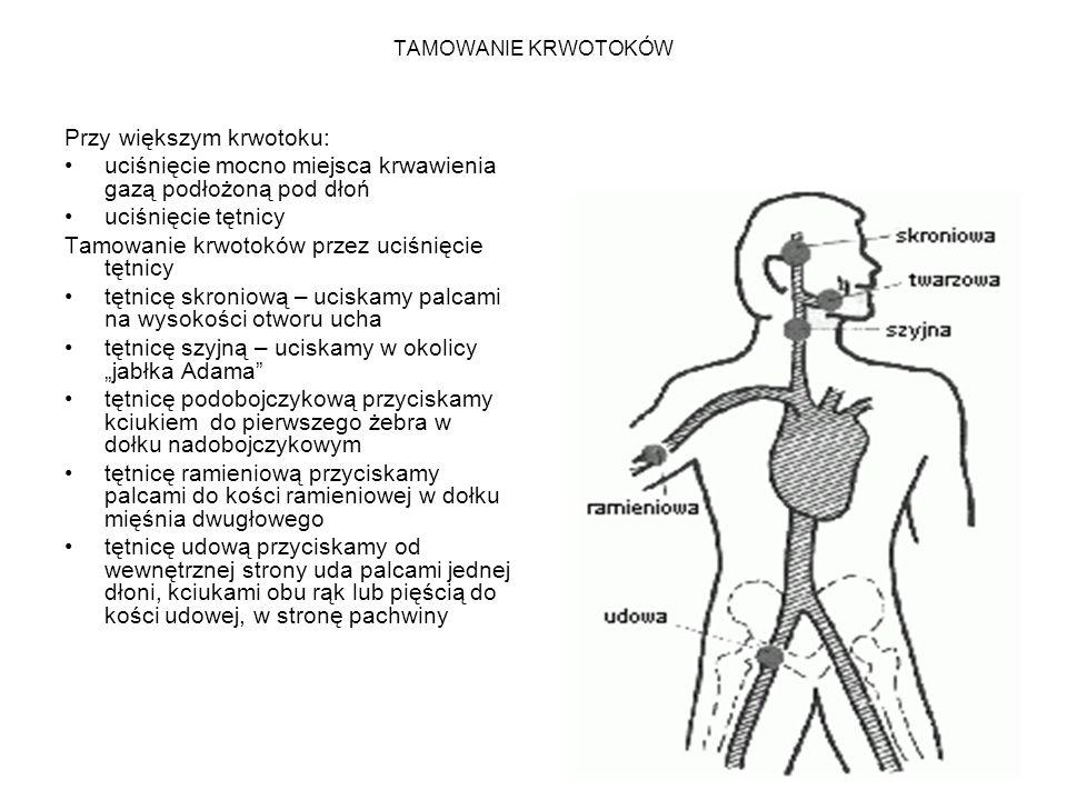 TAMOWANIE KRWOTOKÓW Przy większym krwotoku: uciśnięcie mocno miejsca krwawienia gazą podłożoną pod dłoń uciśnięcie tętnicy Tamowanie krwotoków przez u
