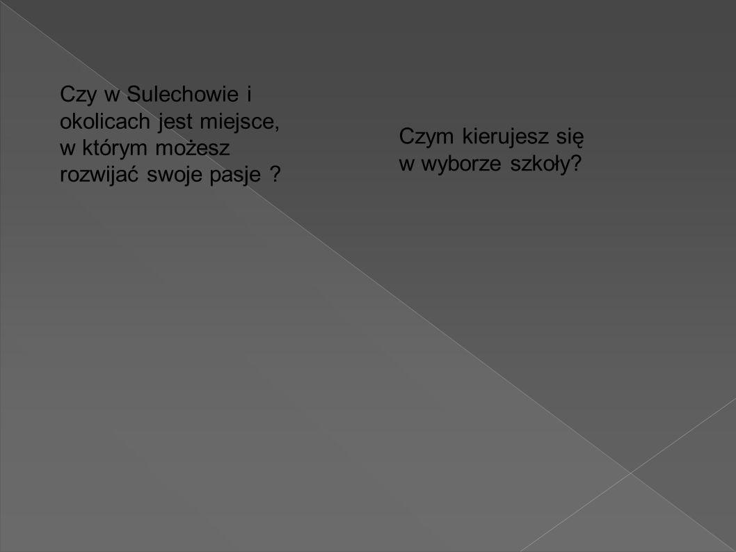 Poza tym: Sulechowskie szkoły oferują bardzo bogatą ofertę zajęć, która jest dostępna na stronach internetowych placówek: www.gimnazjum2.sulechow.pl www.zs3-sulechow.pl www.zsp- sulechow.edu.pl www.