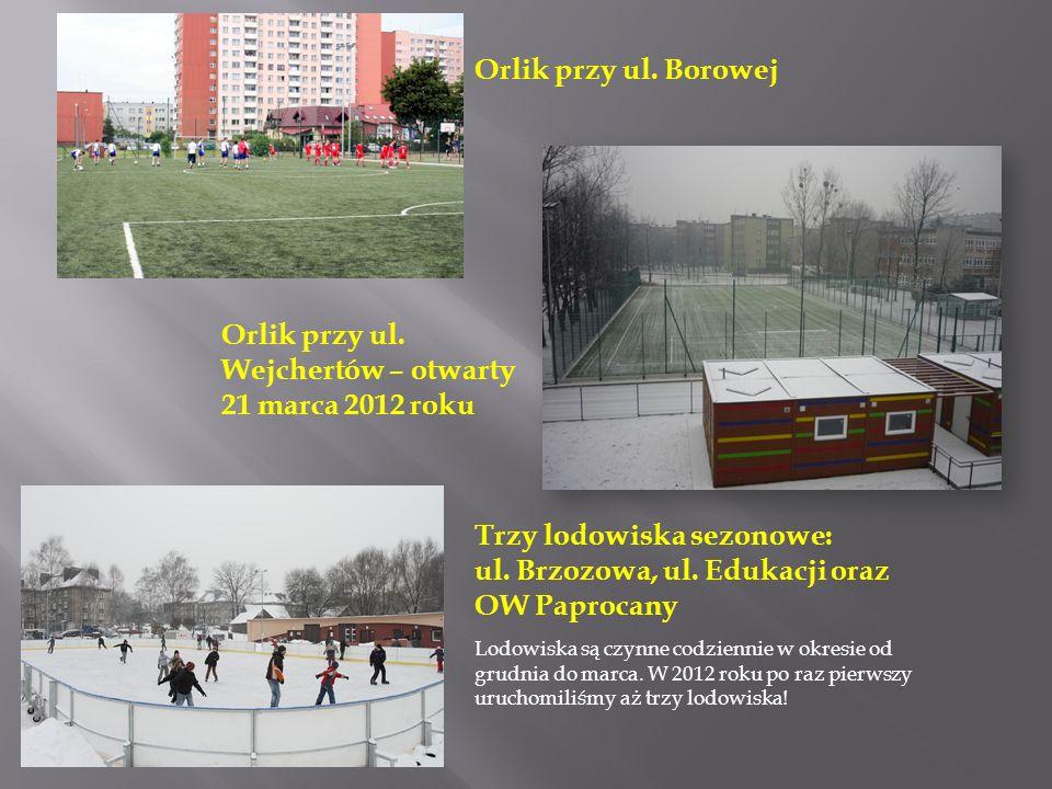 Orlik przy ul. Borowej Trzy lodowiska sezonowe: ul. Brzozowa, ul. Edukacji oraz OW Paprocany Lodowiska są czynne codziennie w okresie od grudnia do ma