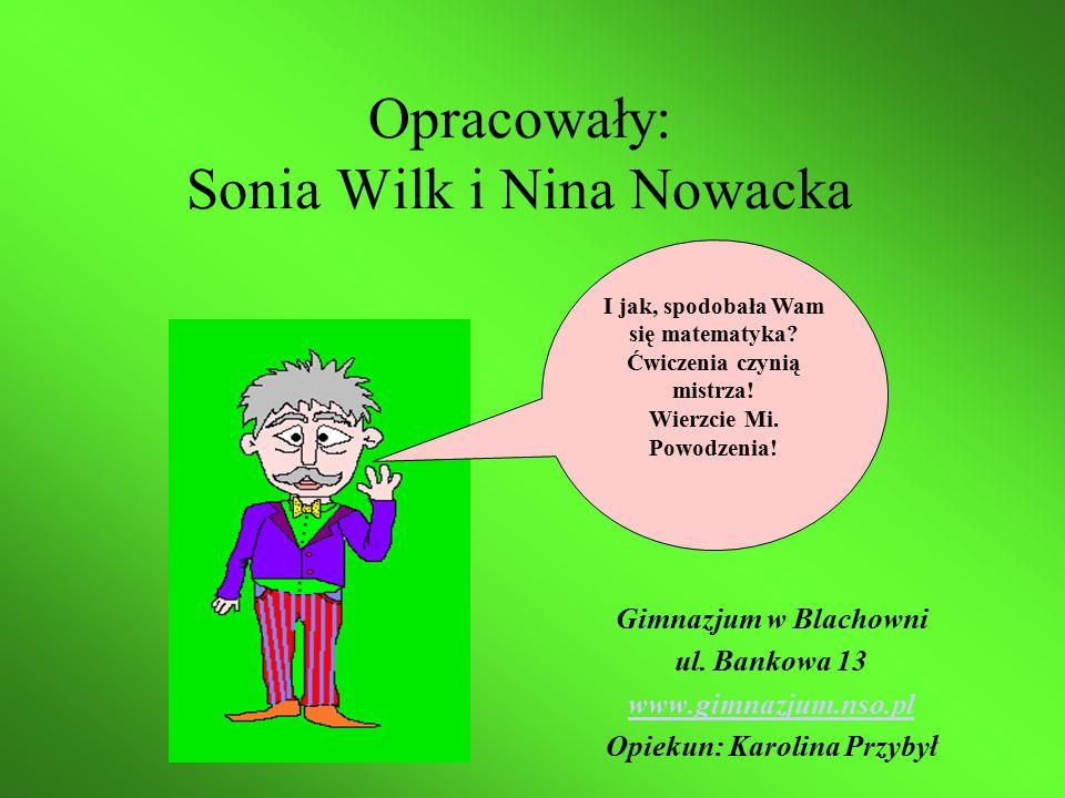 Opracowały: Sonia Wilk i Nina Nowacka Gimnazjum w Blachowni ul.