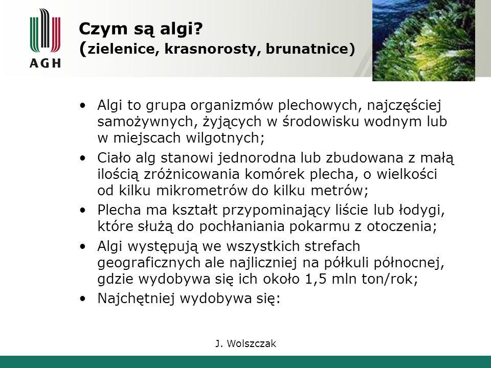 J. Wolszczak Czym są algi.