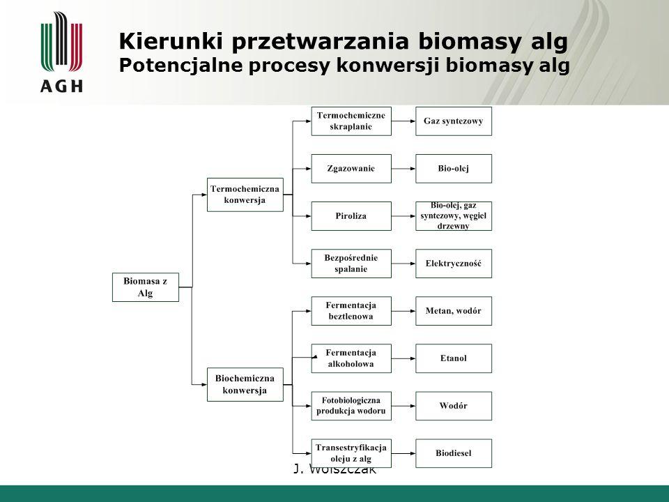 J. Wolszczak Kierunki przetwarzania biomasy alg Potencjalne procesy konwersji biomasy alg
