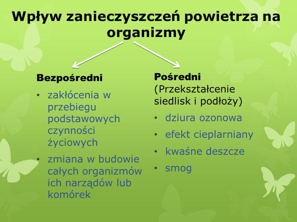Wpływ zanieczyszczeń powietrza na organizmy Bezpośredni zakłócenia w przebiegu podstawowych czynności życiowych zmiana w budowie całych organizmów ich narządów lub komórek Pośredni (Przekształcenie siedlisk i podłoży) dziura ozonowa efekt cieplarniany kwaśne deszcze smog