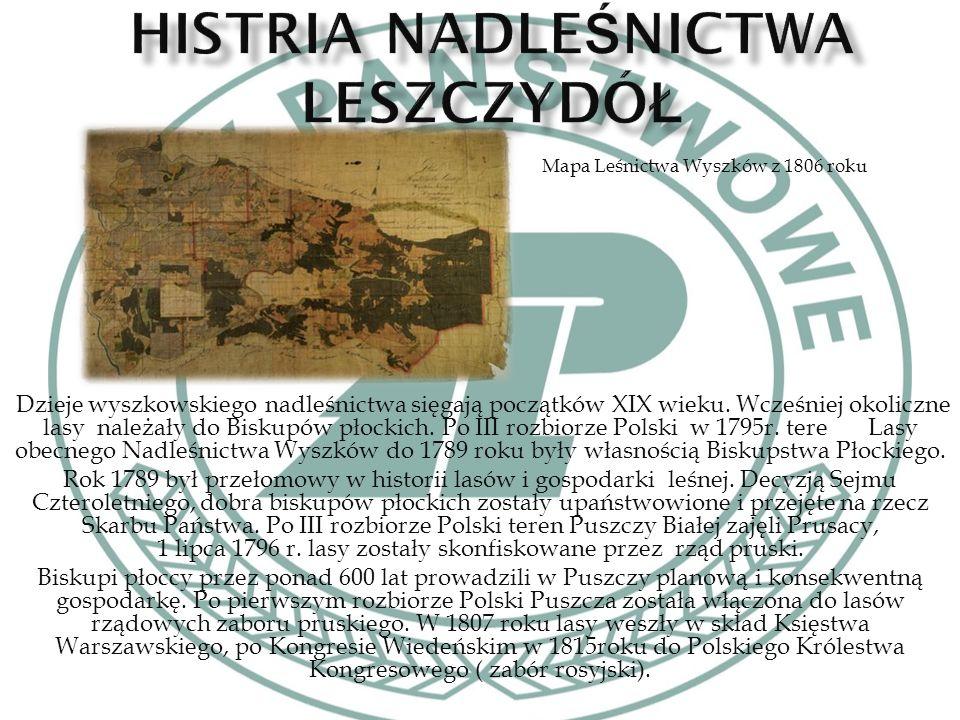 Dzieje wyszkowskiego nadleśnictwa sięgają początków XIX wieku.