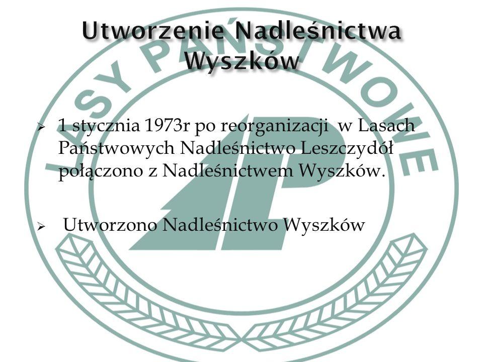  Pierwszym Nadleśniczym Nadleśnictwa Wyszków został Pantaleon Choiński w latach (1973-1994)  Waldemar Żmijewski pełnił funkcję Nadleśniczego Nadleśnictwa Wyszków w latach (1994-2012)