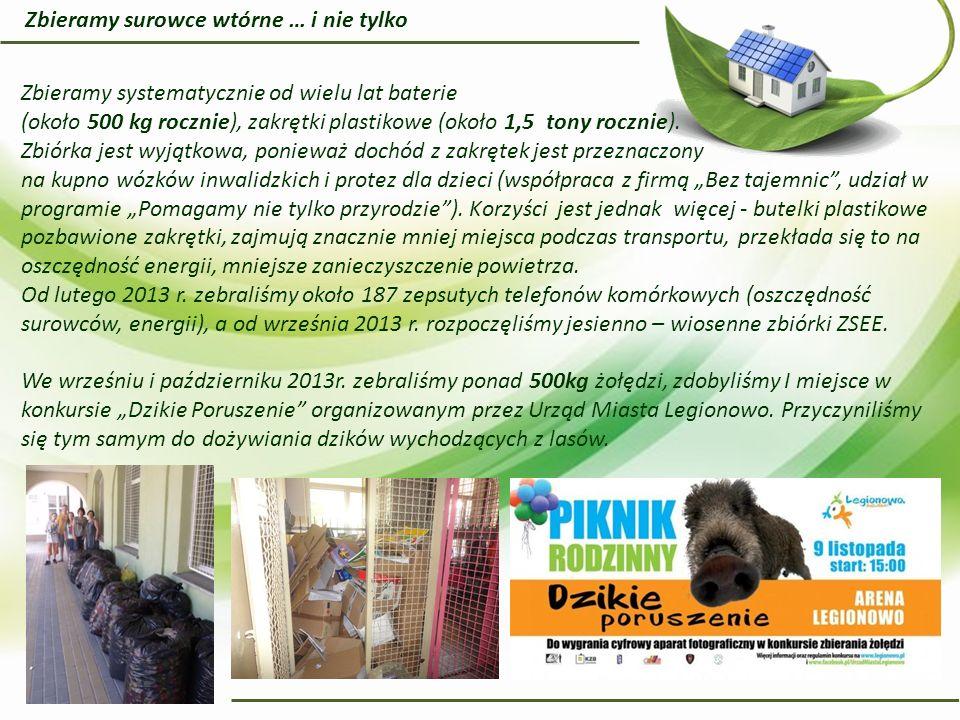 Od wielu lat, jesienią, organizujemy pomoc bezdomnym zwierzętom żyjącym w pobliskim schronisku.
