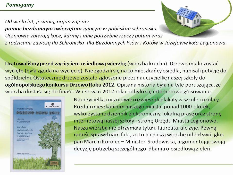 Uczniowie naszej szkoły, w ostatnich kilku latach, sadzili drzewa: sosny, jarzębiny, dęby i modrzew.