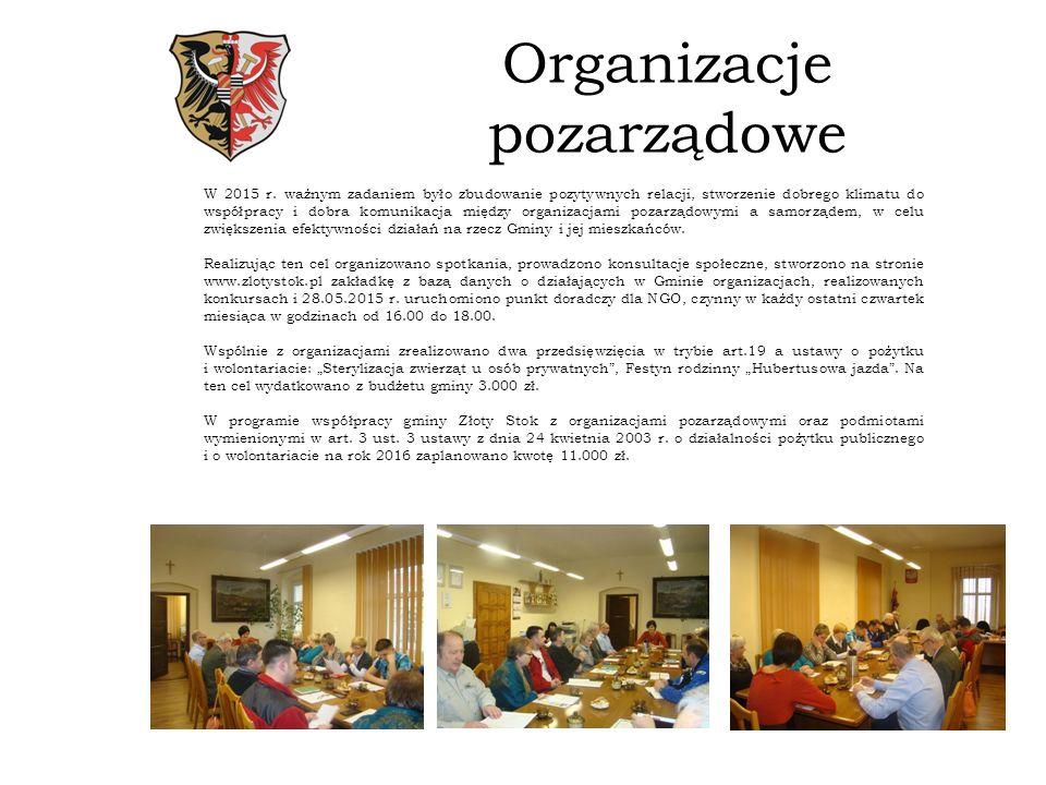 Organizacje pozarządowe W 2015 r.