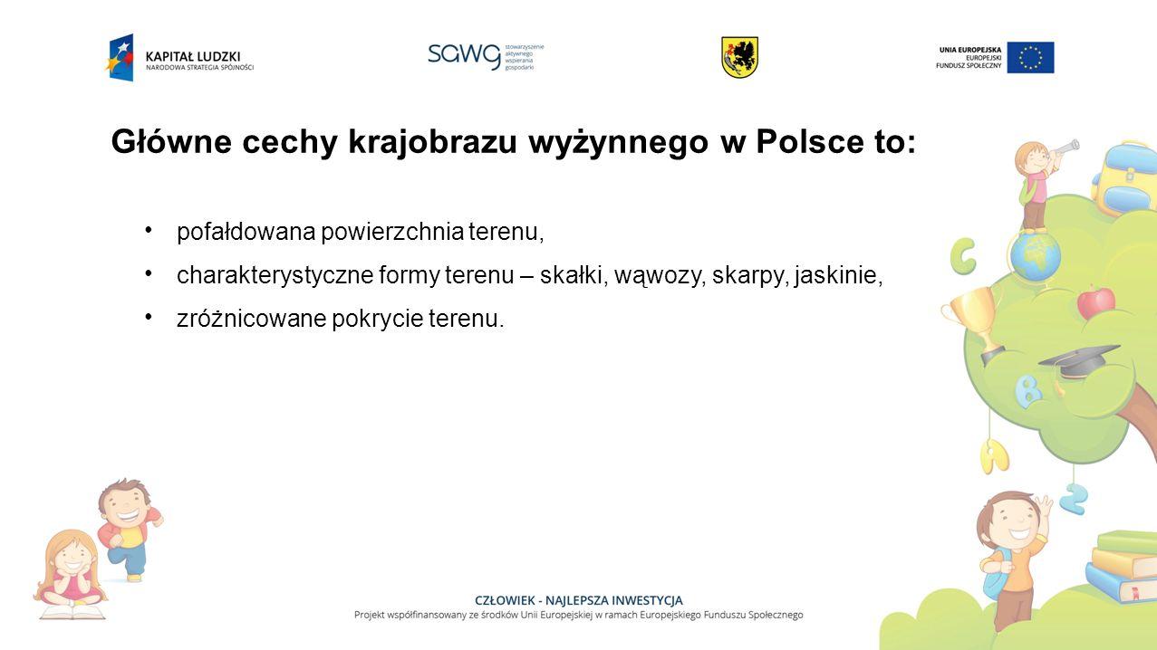Główne cechy krajobrazu wyżynnego w Polsce to: pofałdowana powierzchnia terenu, charakterystyczne formy terenu – skałki, wąwozy, skarpy, jaskinie, zróżnicowane pokrycie terenu.