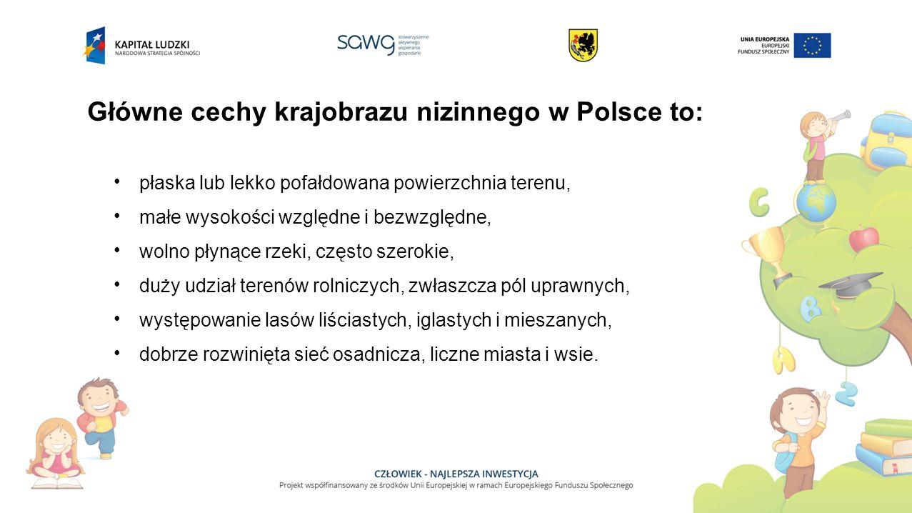 Główne cechy krajobrazu nizinnego w Polsce to: płaska lub lekko pofałdowana powierzchnia terenu, małe wysokości względne i bezwzględne, wolno płynące rzeki, często szerokie, duży udział terenów rolniczych, zwłaszcza pól uprawnych, występowanie lasów liściastych, iglastych i mieszanych, dobrze rozwinięta sieć osadnicza, liczne miasta i wsie.
