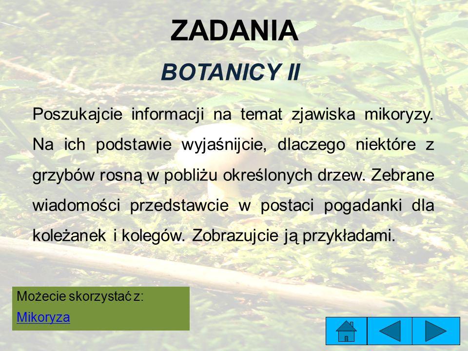 ZADANIA BOTANICY II Poszukajcie informacji na temat zjawiska mikoryzy.