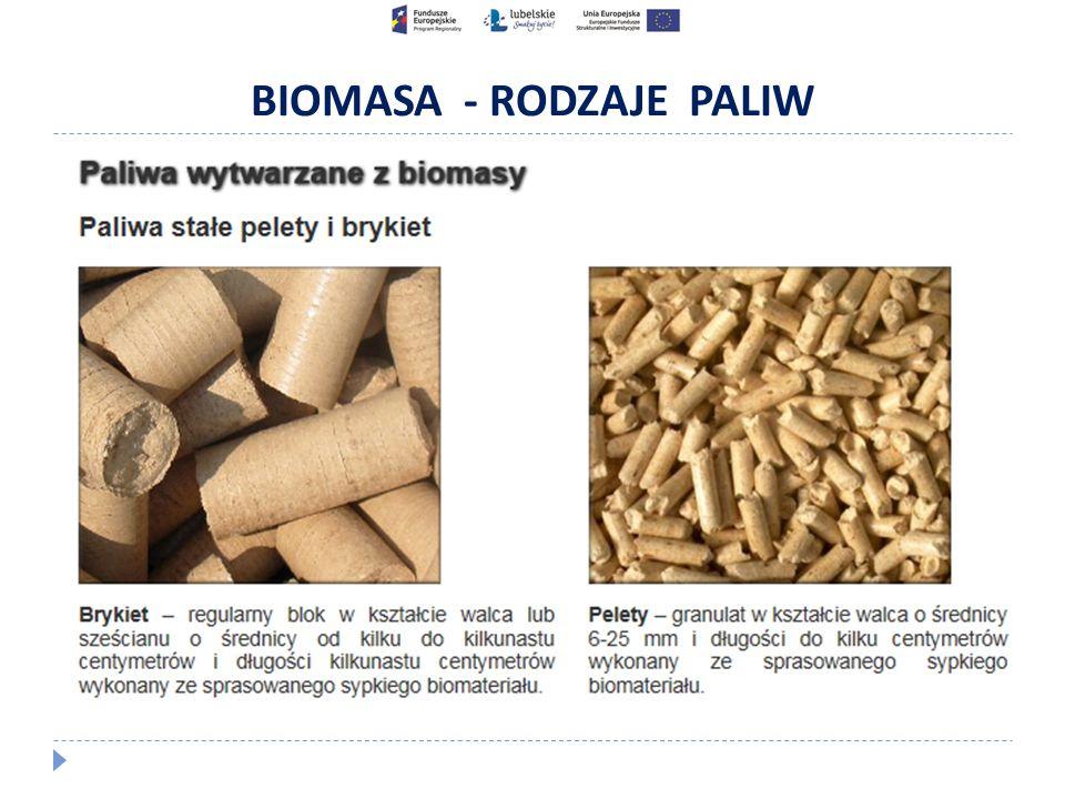 BIOMASA - RODZAJE PALIW