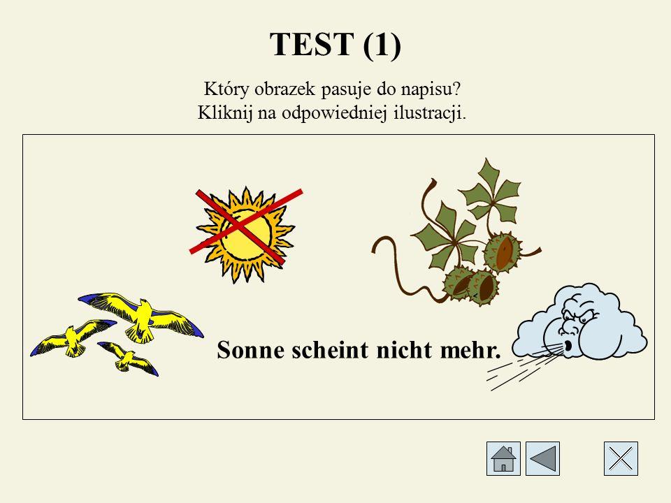TEST (1) Który obrazek pasuje do napisu Kliknij na odpowiedniej ilustracji. Bunte Blätter fallen.