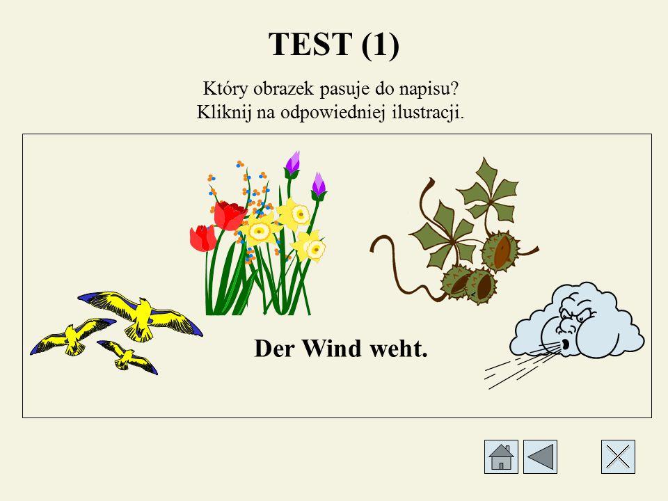Który obrazek pasuje do napisu? Kliknij na odpowiedniej ilustracji. Sonne scheint nicht mehr. TEST (1)