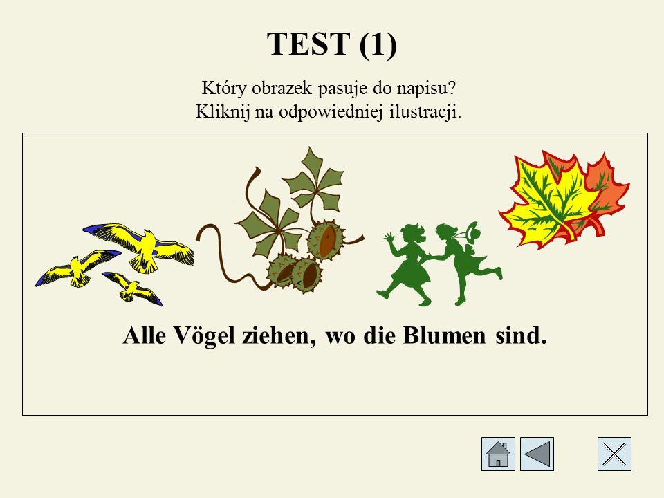 Który obrazek pasuje do napisu? Kliknij na odpowiedniej ilustracji. Im Park warten Kastanien. TEST (1)
